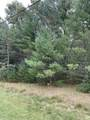 10.265 Acres-Lot 8 o Townline Road - Photo 3