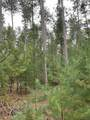 8.95 Acres-Lot 11 of Townline Road - Photo 3