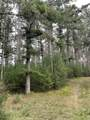 8.457 Acres-Lot 13 o Townline Road - Photo 3