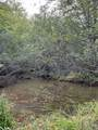 8.457 Acres-Lot 13 o Townline Road - Photo 4
