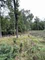 8.457 Acres-Lot 13 o Townline Road - Photo 6