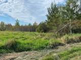 56.15 Acres Kline Road - Photo 1