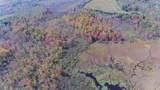 56.15 Acres Kline Road - Photo 12