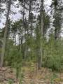 4.282 Acres-Lot 9 of Townline Road - Photo 2