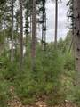 4.282 Acres-Lot 9 of Townline Road - Photo 3