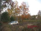 15825 Island Lake Road - Photo 2