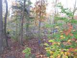 15825 Island Lake Road - Photo 26