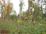 15825 Island Lake Road - Photo 29