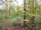 15825 Island Lake Road - Photo 47