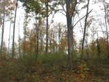15825 Island Lake Road - Photo 52