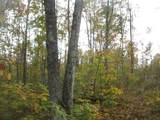 15825 Island Lake Road - Photo 54