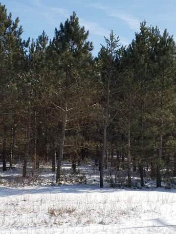 ON-Meteor 8307-3 State Highway 13, Friendship, WI 53934 (MLS #21808247) :: EXIT Midstate Realty