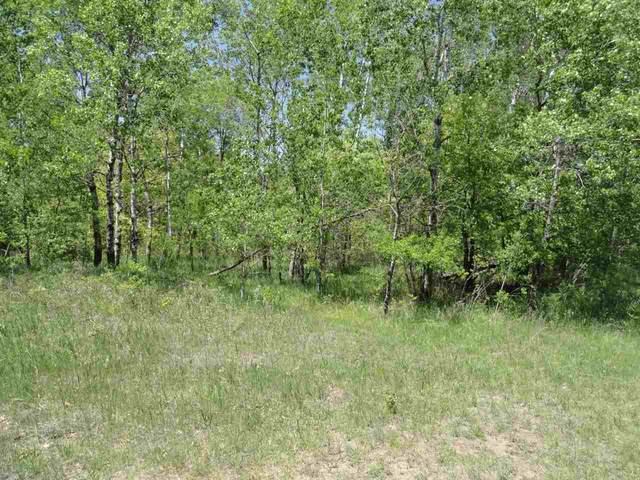 22 acres-Lot 11 Ray Art Road, Iola, WI 54945 (MLS #21809247) :: EXIT Midstate Realty