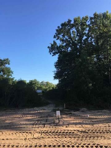 Lot 11 Brooke Lane, Stevens Point, WI 54481 (MLS #22000616) :: EXIT Midstate Realty