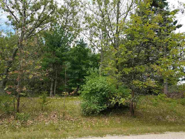 Lot 10 Fish Court, Oxford, WI 53965 (MLS #22001241) :: EXIT Midstate Realty
