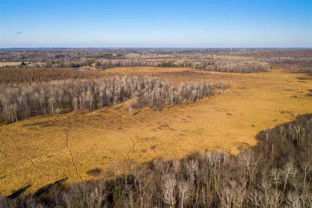160 Acres Martin Road, Mosinee, WI 54455 (MLS #22003060) :: EXIT Midstate Realty