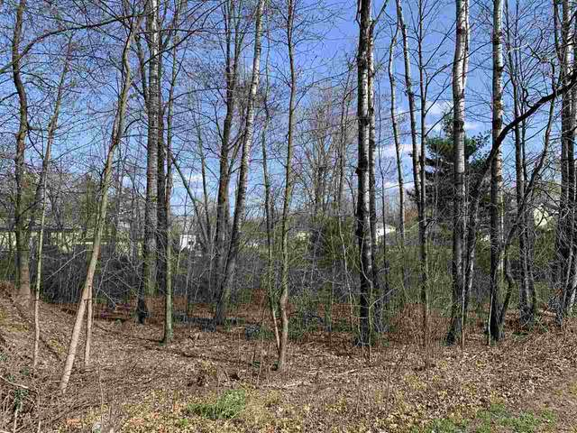 00 Echo Dells Avenue, Stevens Point, WI 54481 (MLS #22101809) :: EXIT Midstate Realty