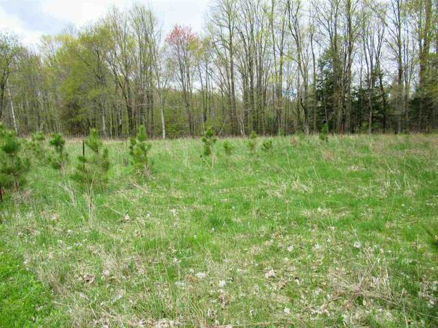 +/- 5.39 Acres Sawyer Avenue, Medford, WI 54451 (MLS #22102103) :: EXIT Midstate Realty