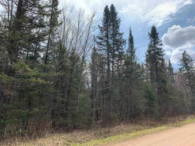 40 Acres County Road J, VILAS, WI 54435 (MLS #22102113) :: EXIT Midstate Realty