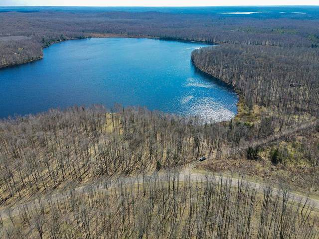 Lot 2 Sand Lake Road, NASHVILLE, WI 54520 (MLS #22103258) :: EXIT Midstate Realty
