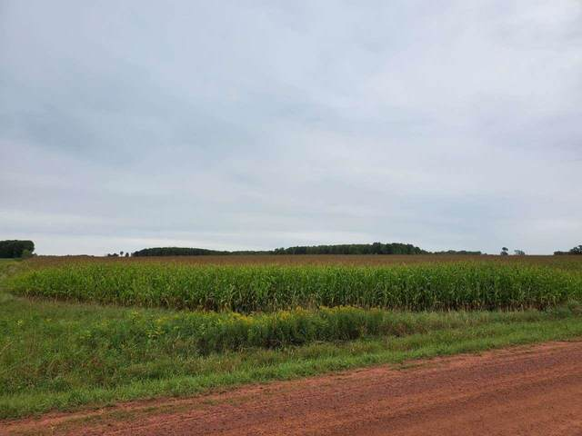 153RD ROAD, Spencer, WI 54479 (MLS #22105139) :: EXIT Midstate Realty