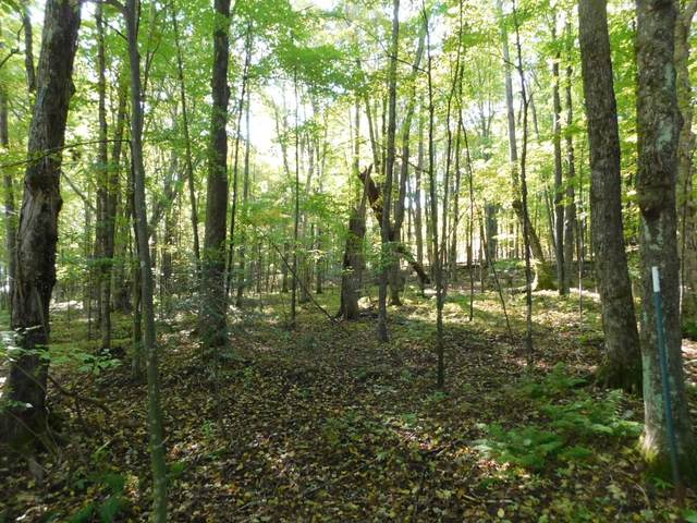 Lot 4 Edward Drive, Merrill, WI 54452 (MLS #22105241) :: EXIT Midstate Realty