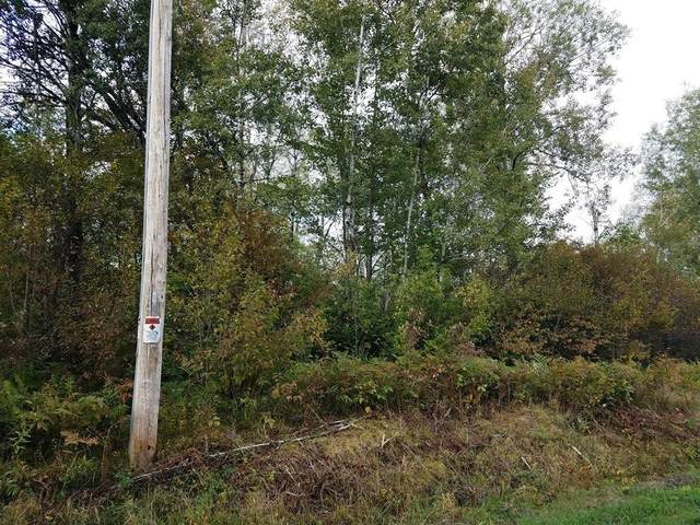Grundy Road, Tomahawk, WI 54487 (MLS #22105257) :: EXIT Midstate Realty