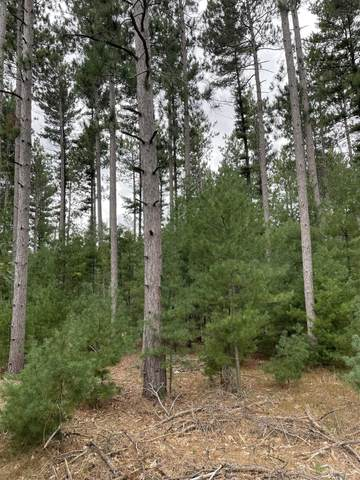 10.369 Acres-Lot 8 o 48TH STREET SOUTH, Wisconsin Rapids, WI 54494 (MLS #22105342) :: EXIT Midstate Realty