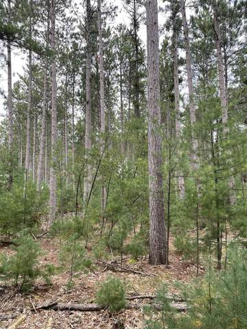 4.28 Acres-Lot 10 of Townline Road, Wisconsin Rapids, WI 54494 (MLS #22105345) :: EXIT Midstate Realty