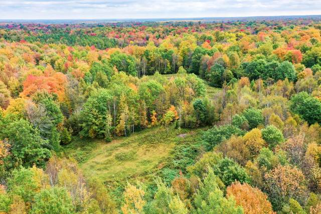 +/-41.07 Acres Wellington Lake Drive, Medford, WI 54451 (MLS #22105366) :: EXIT Midstate Realty