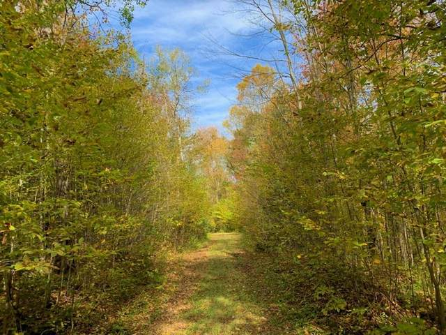 Camp 26 Road, Merrill, WI 54452 (MLS #22105818) :: EXIT Midstate Realty