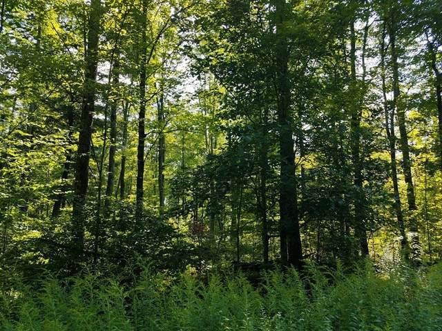 Elmer Natzke Drive, Merrill, WI 54452 (MLS #22105828) :: EXIT Midstate Realty