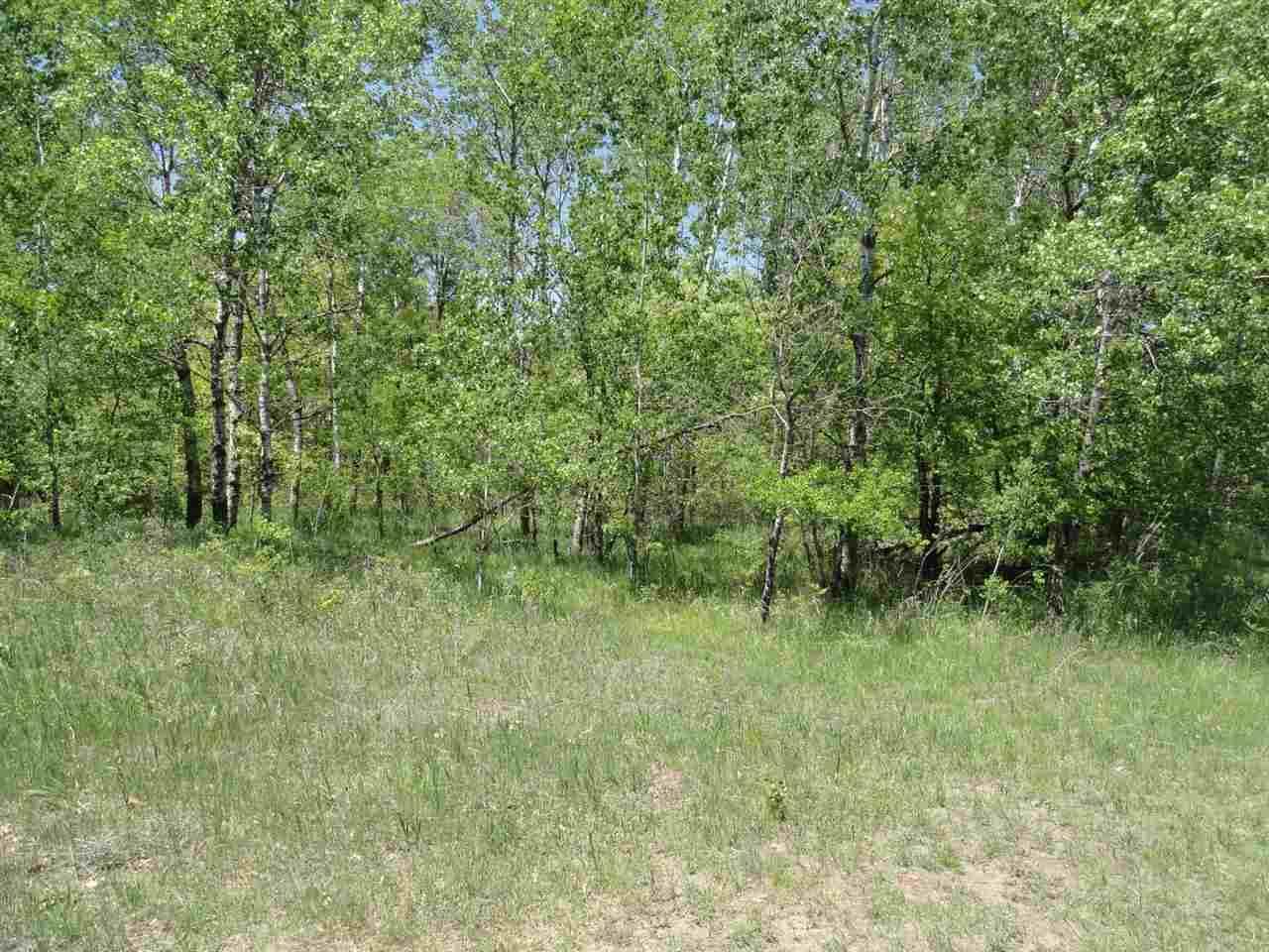 22 acres-Lot 11 Ray Art Road - Photo 1