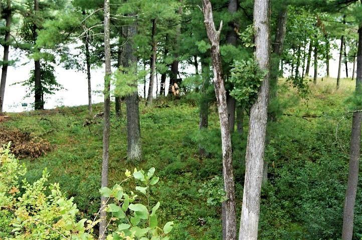 1541 East Shore Trail - Photo 1
