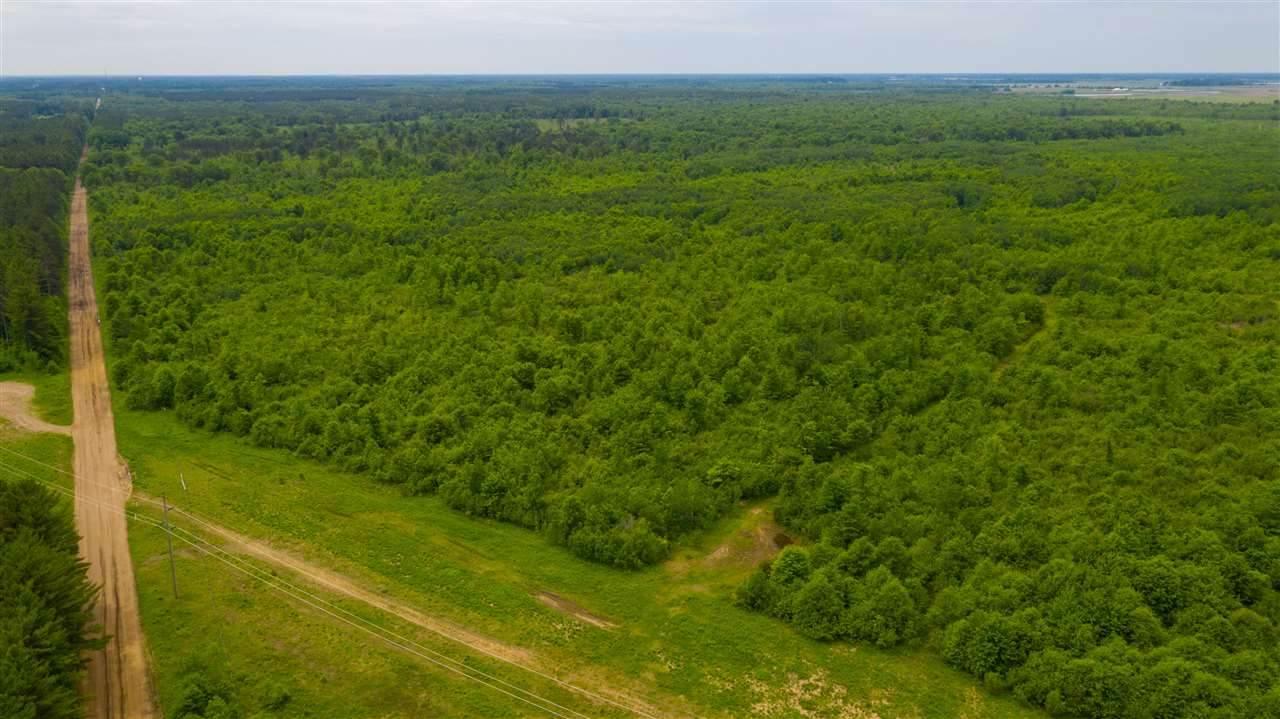 160 Acres MOL Range Road - Photo 1
