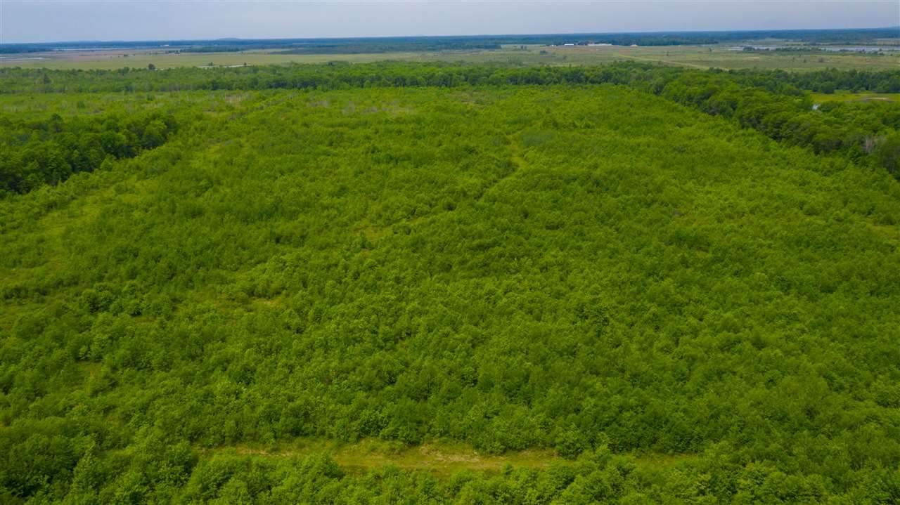 112.3 Acres MOL Marsh Road - Photo 1