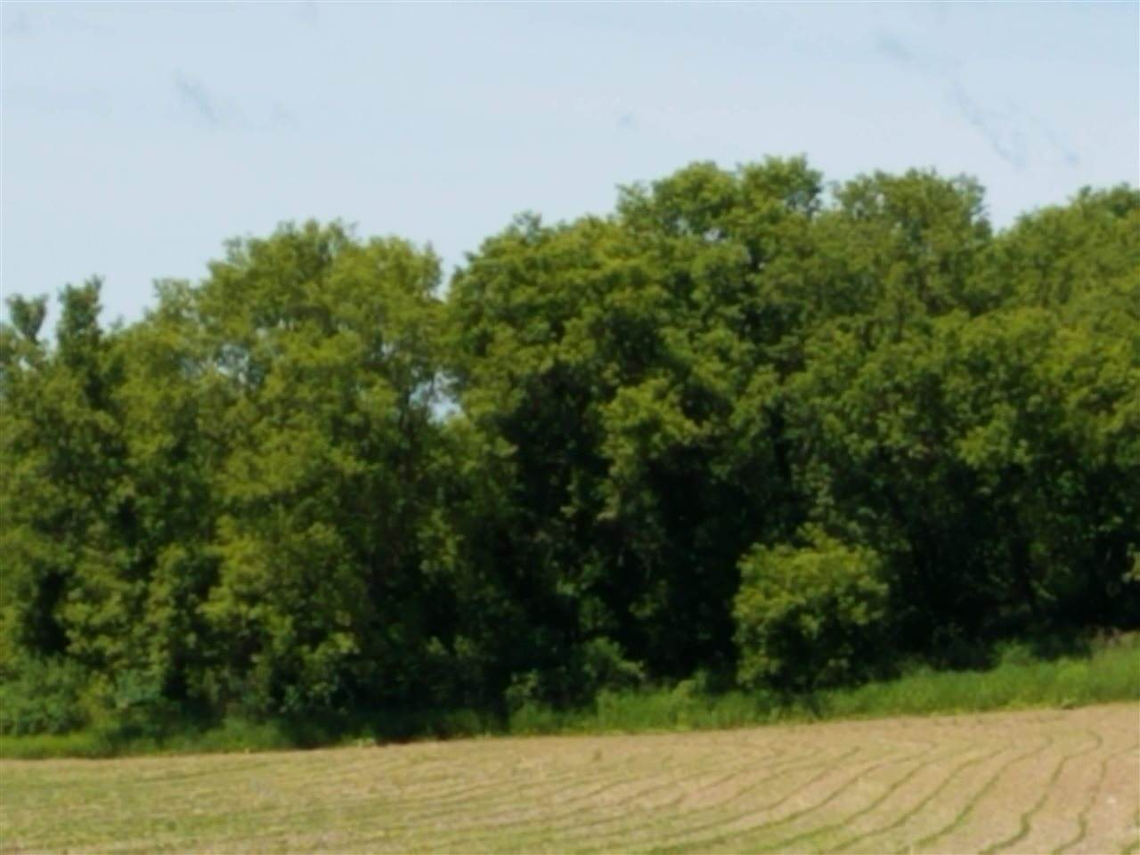 State Highway 131 - Photo 1