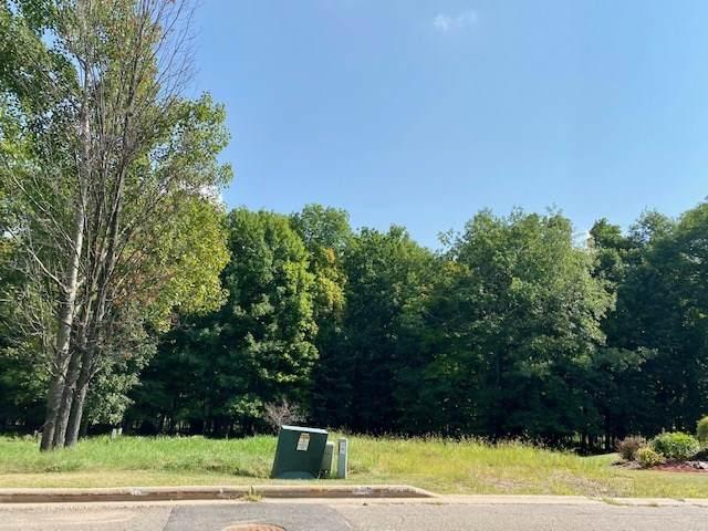 Lot 59 & 60 Kingbird Avenue - Photo 1