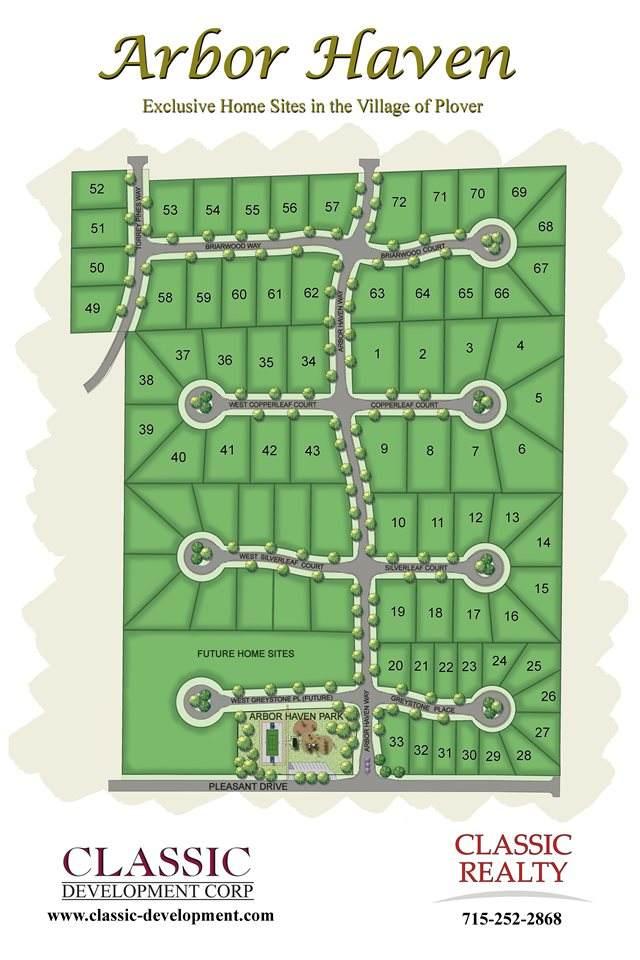 627-Lot 60 Briarwood Way - Photo 1