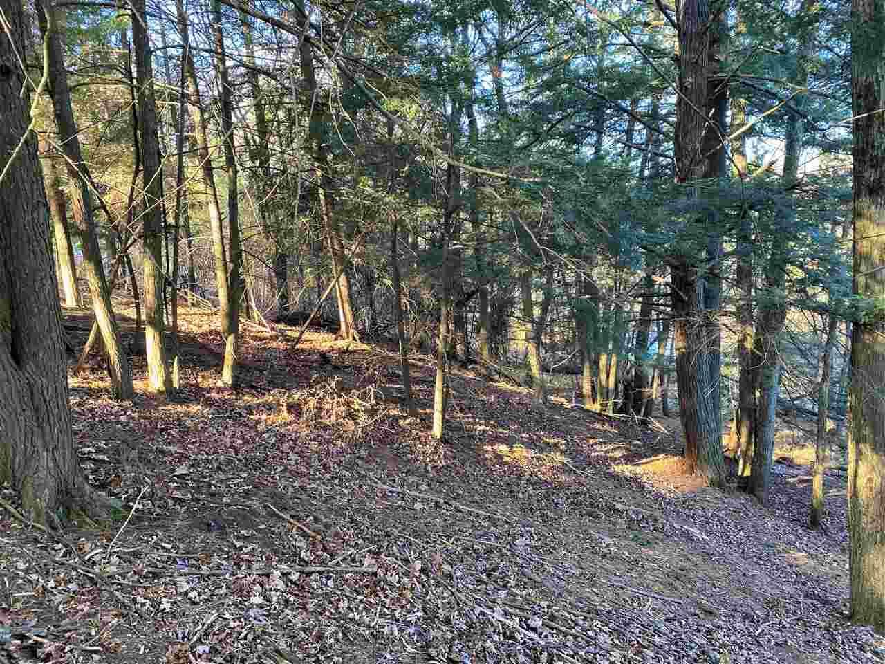 0-Parcel 34-08739 River Birch Lane - Photo 1