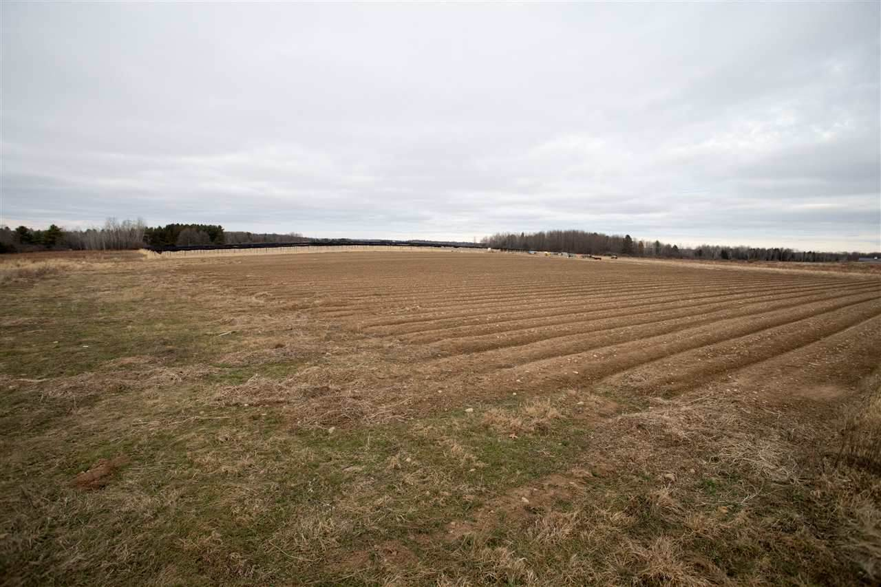 29.22 acres County Road Z - Photo 1