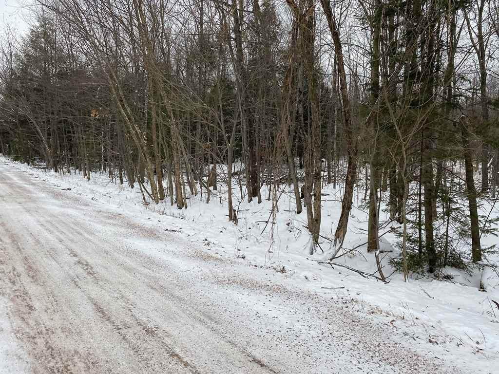 15.65 Acres Prehn Drive - Photo 1