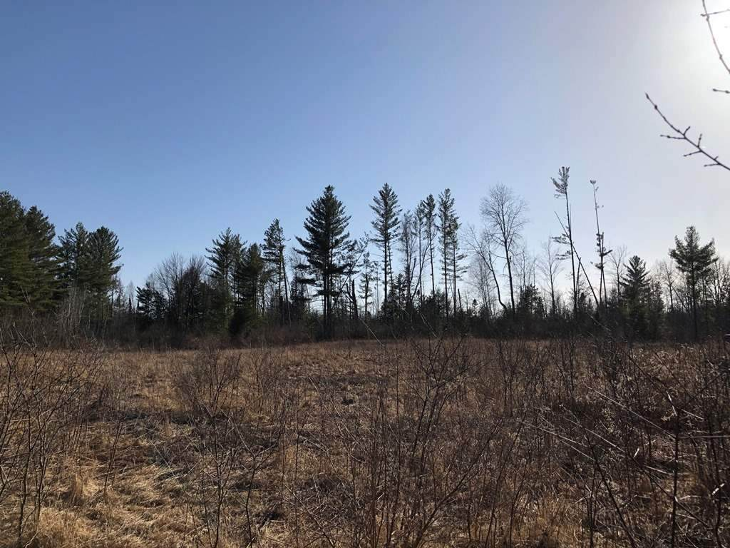 30 Acres MOL State Highway 107 - Photo 1