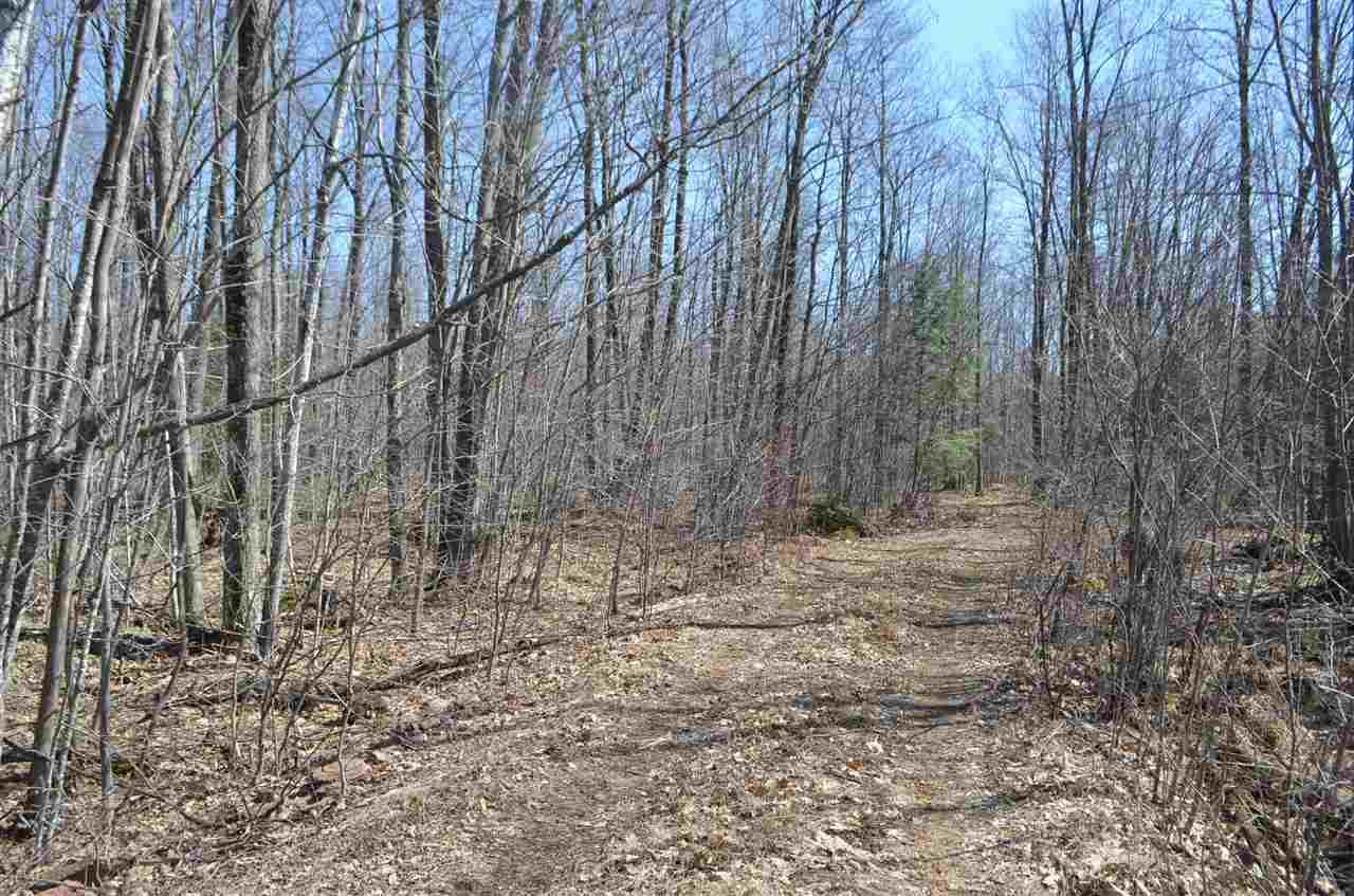 40 Ac Trappe River Road - Photo 1