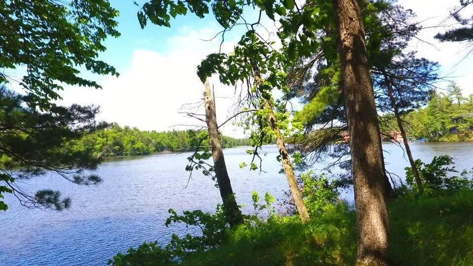 LOT 22 East Shore Trail - Photo 1