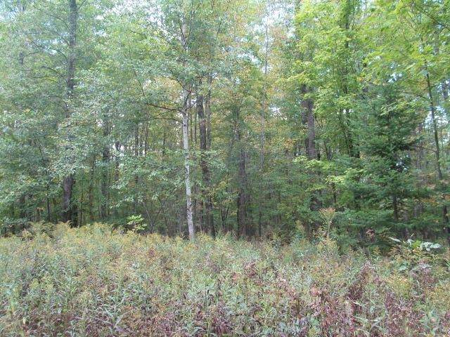 516.7 Acres County Road A - Photo 1