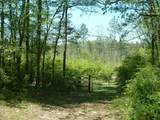 00 Dogwood Valley Road - Photo 1