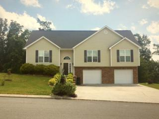123 Promise Heights Drive, Ringgold, GA 30736 (MLS #110083) :: The Mark Hite Team
