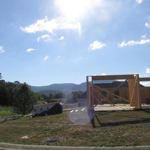 107 Fawn Ridge Road, CHATSWORTH, GA 30705 (MLS #112518) :: The Mark Hite Team