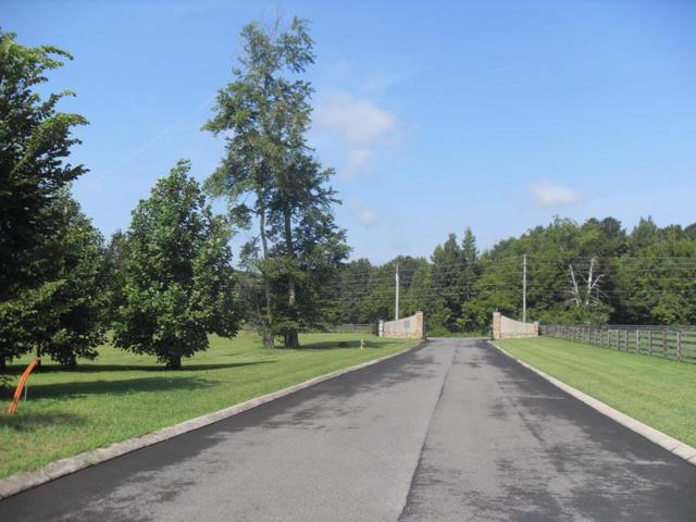 003 Loblolly Lane, Tunnel Hill, GA 30755 (MLS #112843) :: The Mark Hite Team